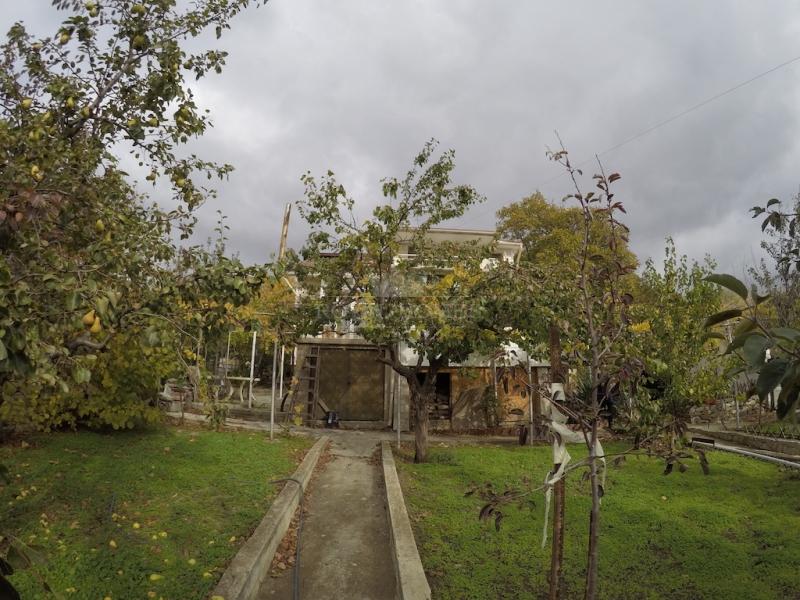 Сельская недвижимость в Кошарица для круглогодично